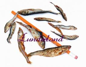 Lunderland Lodde 200gr